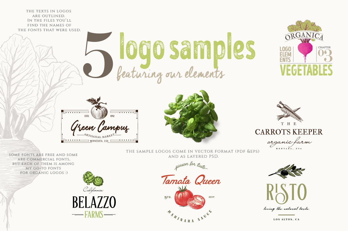 ORGANIC LOGO ELEMENTS – VEGETABLES By Friendly Label