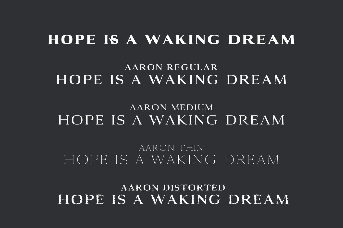 Aaron Serif Font Family By Creativewhoa Thehungryjpeg Com