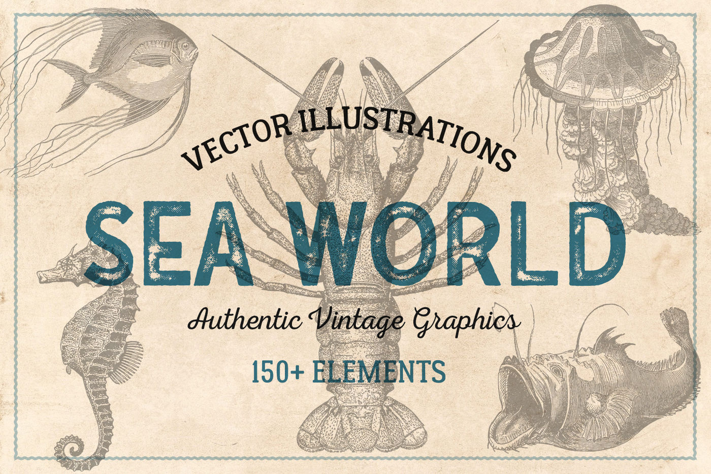 154 Vintage Sea Illustrations By Brigantine Designs