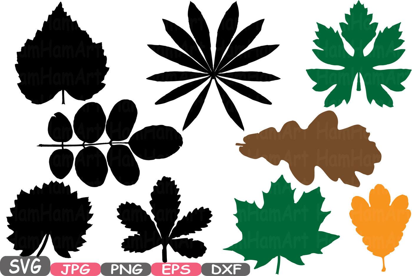 Silhouette Leaf Svg