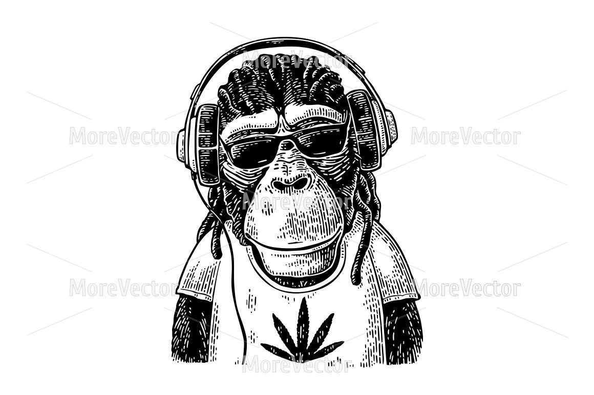 4ca089d8eda823 Monkey hipster with dreadlocks in headphones, sunglasses and t-shirt ...