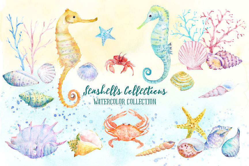 Watercolor Clipart Seashell Collection By Cornercroft