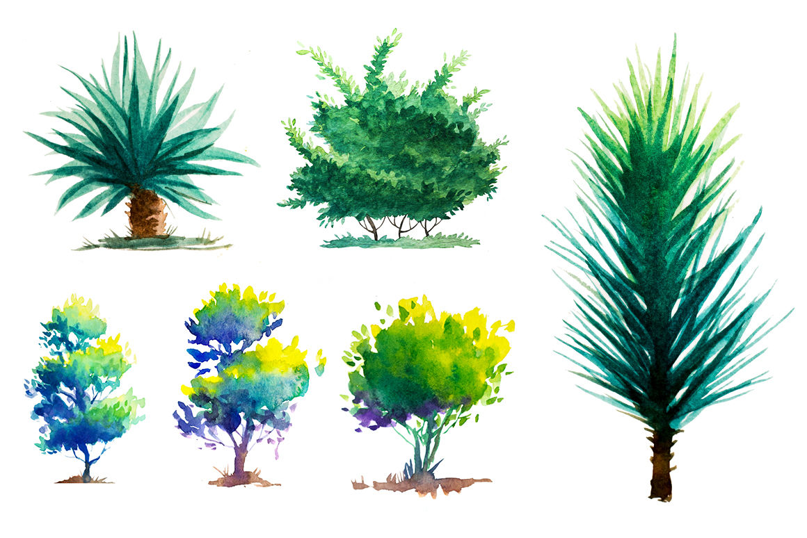 Watercolor Trees By Alex Green Thehungryjpeg Com