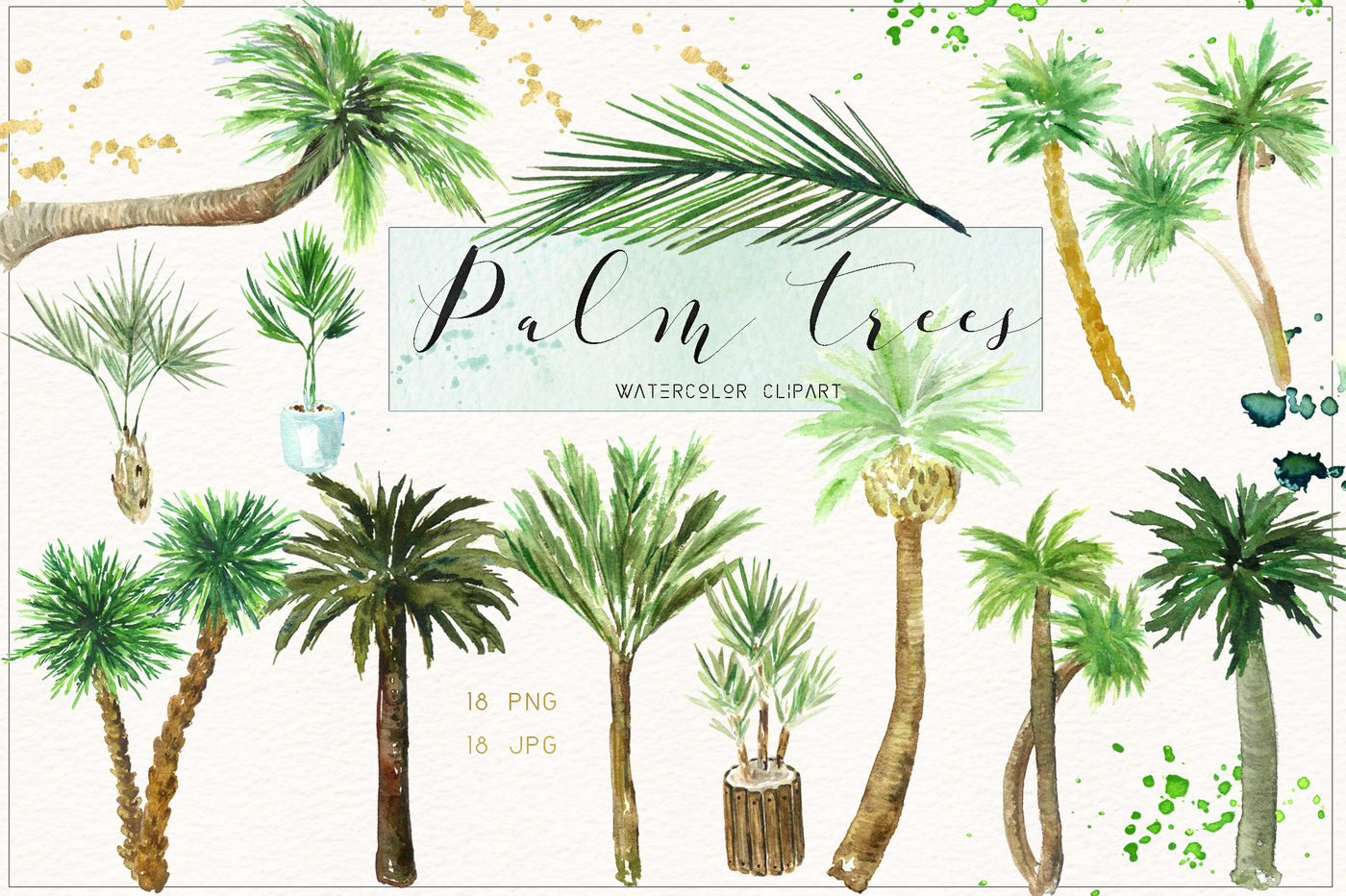 Palm Tree Watercolor Clipart By Labfcreations Thehungryjpeg Com