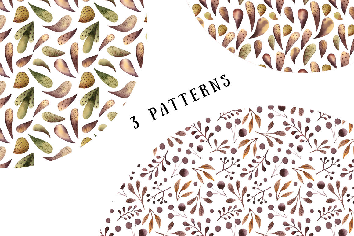 Mysterious Paisley Plants Watercolor Clip Art Set By