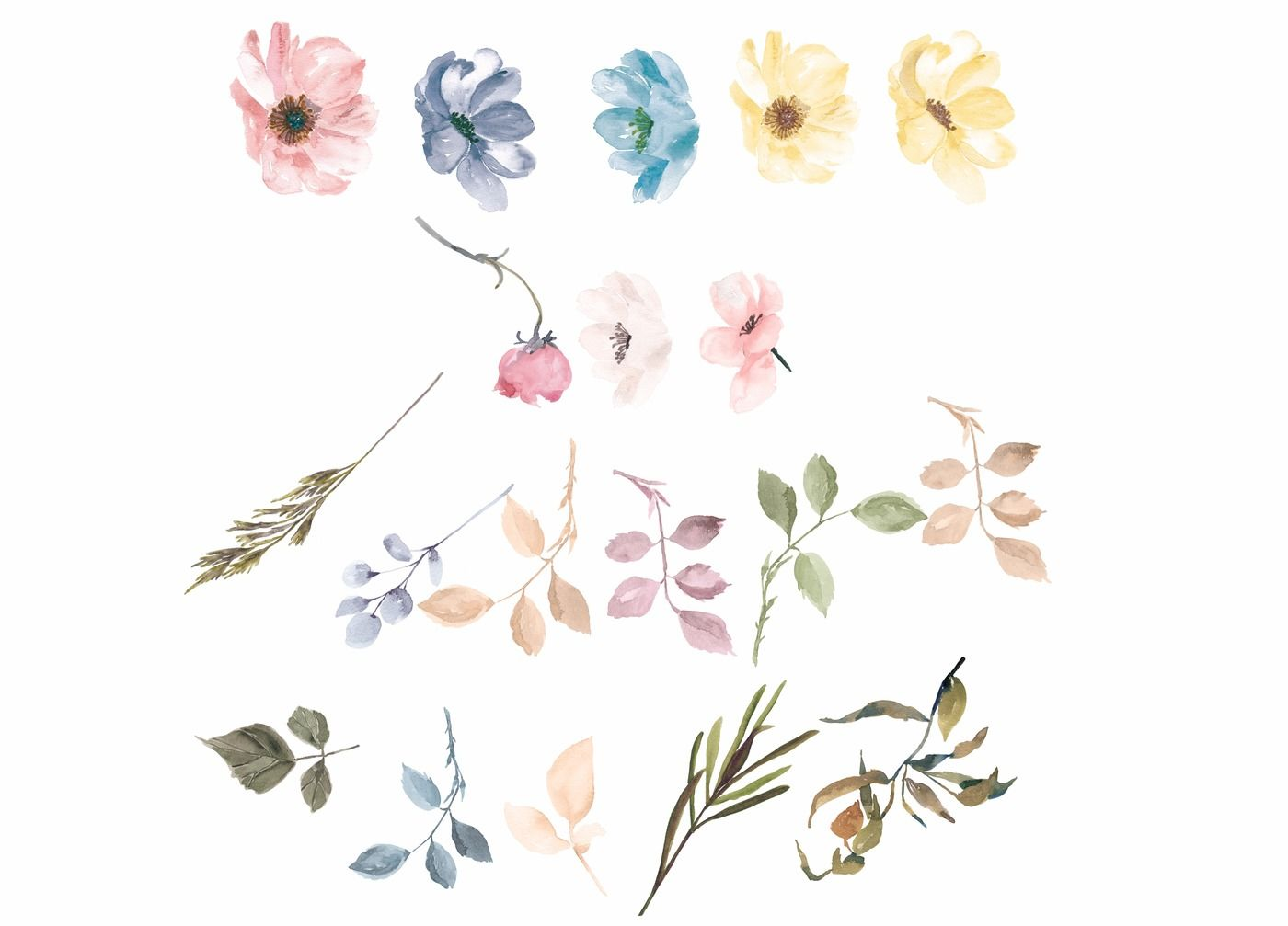 Watercolor Flowers Clipart Pastel Colors By Patishop Art