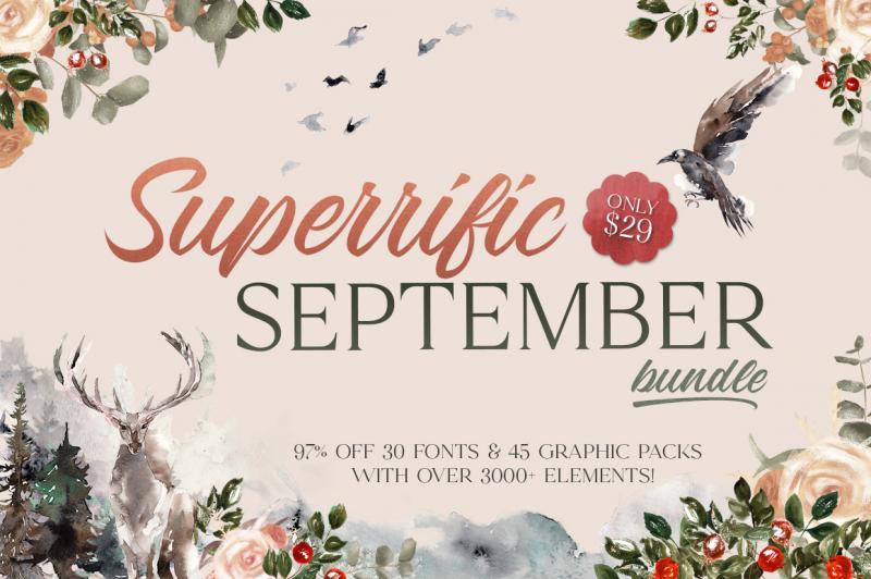 Graphic Design Bundles | TheHungryJPEG com