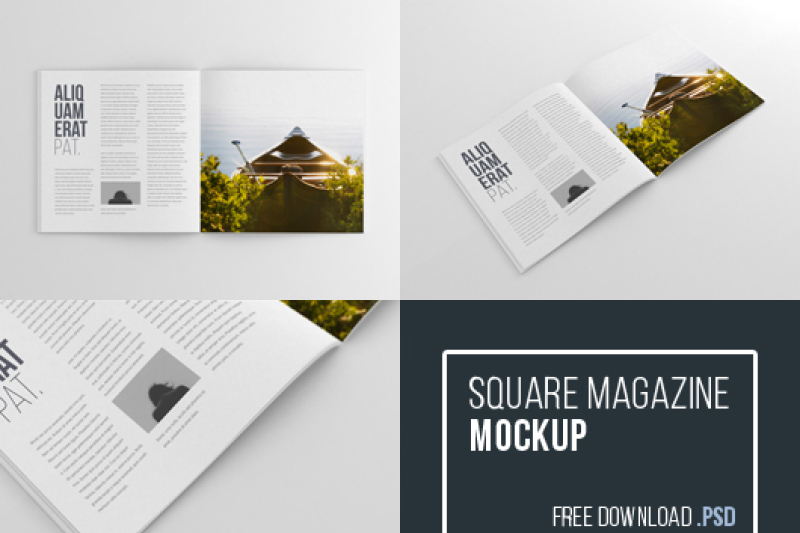 Free Psd Mockup Templates Download