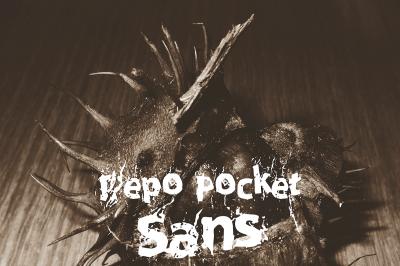 FREE Repo Pocket Sans Font