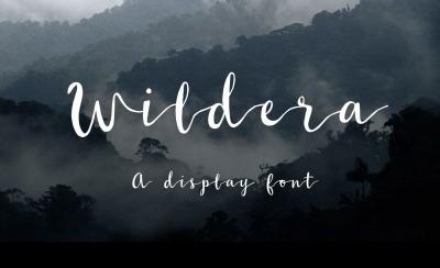 FREE Wildera Font