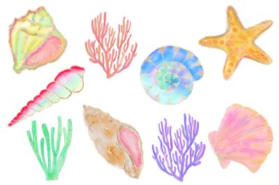 FREE Fancy Seashell Elements