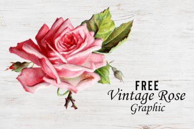 FREE Vintage Rose