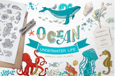 FREE Ocean Underwater Life