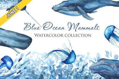 FREE Blue Ocean Mammals