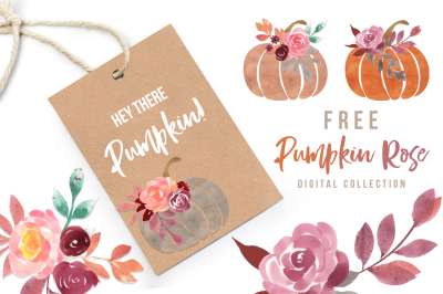 FREE Pumpkin Rose Graphics