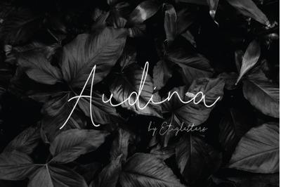 FREE Audina Font