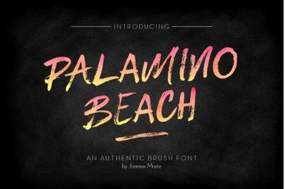 FREE Palamino Beach Brush Font