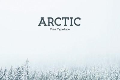 FREE Arctic Typeface
