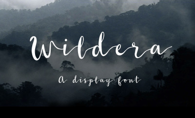 Free Font: Wildera - A Display Typeface