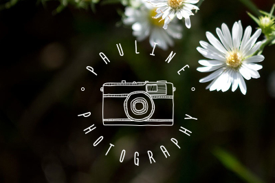 FREE hand-drawn camera logo template