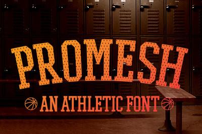 FREE Promesh Font
