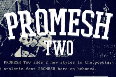 FREE Promesh Two Font